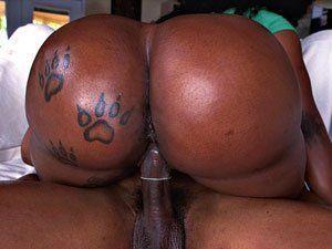 Diamond Monroe Negra Cavala Dando Xoxota